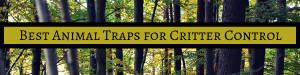 best animal traps for sale near me