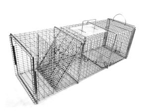 best raccoon trap bait amazon
